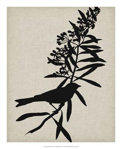 Audubon Silhouette I Poster by Vision Studio for $50.00 CAD