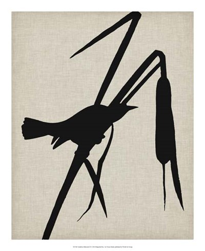 Audubon Silhouette II Poster by Vision Studio for $50.00 CAD