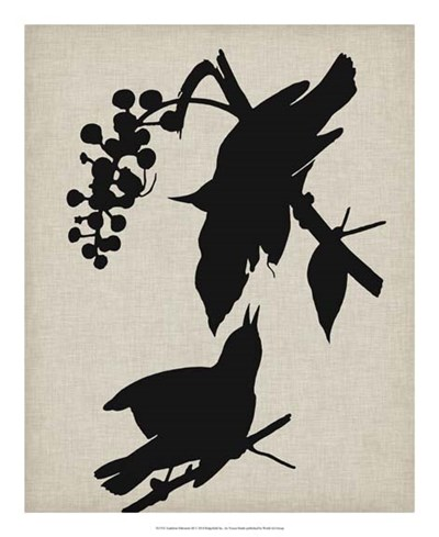 Audubon Silhouette III Poster by Vision Studio for $50.00 CAD
