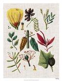 Floral Assemblage I
