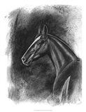 Charcoal Equestrian Portrait II