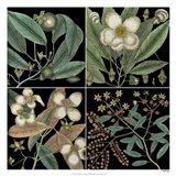 Graphic Botanical Grid V