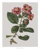 Floral Gems I