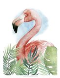 Watercolor Flamingo Composition II