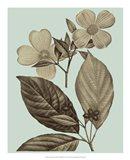 Flowering Trees III