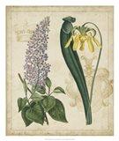 Botanical Repertoire IV