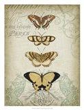 Cartouche & Butterflies II