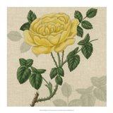 Floral Delight IX