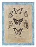 Bookplate Butterflies III