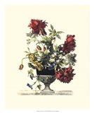Flowers for June II