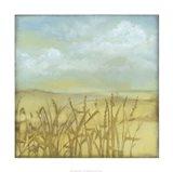 Through the Wheatgrass I