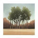 Stand of Trees I