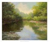 O'Bannon Summer Creek