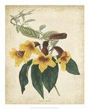 Tropical Floral VI