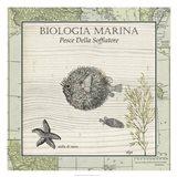 Biologia Marina II