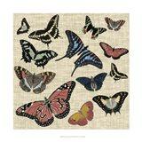Butterflies & Linen I