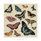 Butterflies & Linen II