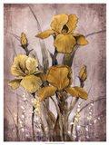 Golden Irises II
