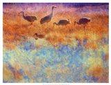 Cranes in Soft Mist