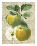 Orchard Medley I