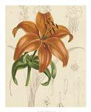 Floral Pairings IV
