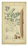 Vintage Turpin Botanical V