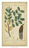 Vintage Turpin Botanical VII