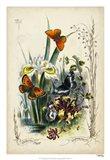 Victorian Butterfly Garden II