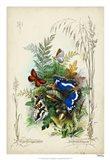 Victorian Butterfly Garden III
