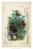 Victorian Butterfly Garden IV