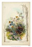 Victorian Butterfly Garden IX