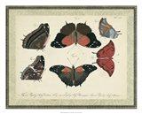 Bookplate Butterflies Trio II