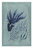 Indigo & Azure Seaweed II