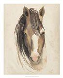 Watercolor Animal Study V