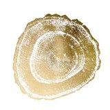 Gold Foil Tree Ring III - Metallic Foil