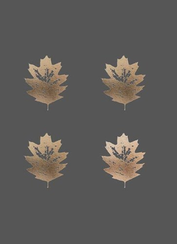 4-Up Rose Gold Foil Leaf III on Dark Grey Poster by Jennifer Goldberger for $137.50 CAD