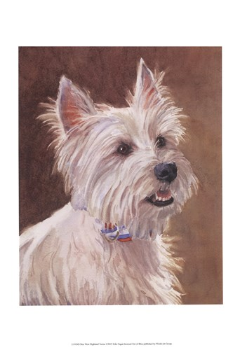 Mac West Highland Terrier Poster by Edie Fagan for $20.00 CAD