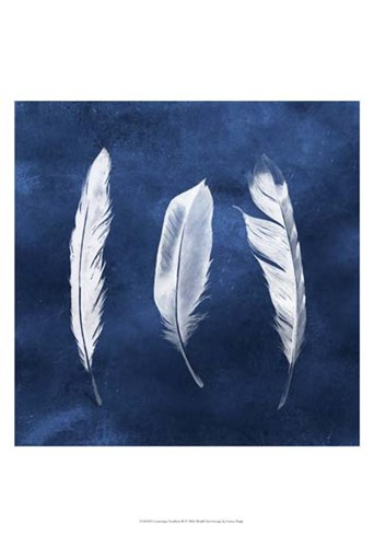 Cyanotype Feathers II Poster by Grace Popp for $21.25 CAD