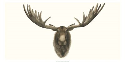 Moose Bust Poster by Grace Popp for $27.50 CAD