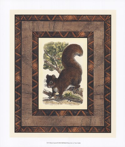 Rustic Squirrel Poster by Vision Studio for $33.75 CAD