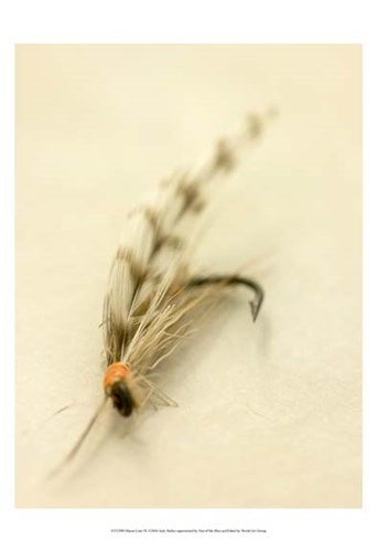 Macro Lure IX Poster by Judy Stalus for $21.25 CAD
