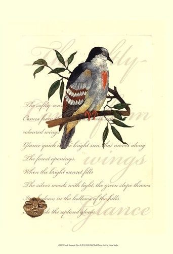 Small Romantic Dove II Poster by Vision Studio for $21.25 CAD