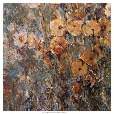 Amber Poppy Field I Poster by Timothy O'Toole for $27.50 CAD