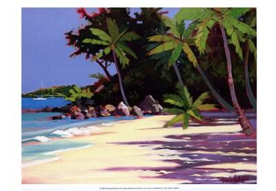 Solomon Beach Poster by Shari Erickson for $21.25 CAD