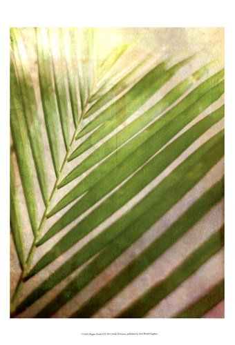 Elegant Frond II Poster by Emily Robinson for $21.25 CAD