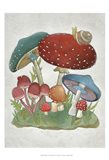Mushroom Collection I