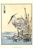 Oriental Crane I