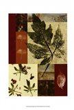 Leaf Print Collage (U) III