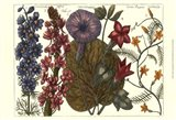 Printed Arena Botanical IV