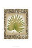 Exotic Palm Leaf II